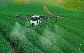 Via libera ai droni per spruzzare prodotti fitosanitari nella viticoltura,  in Francia | Quadricottero News
