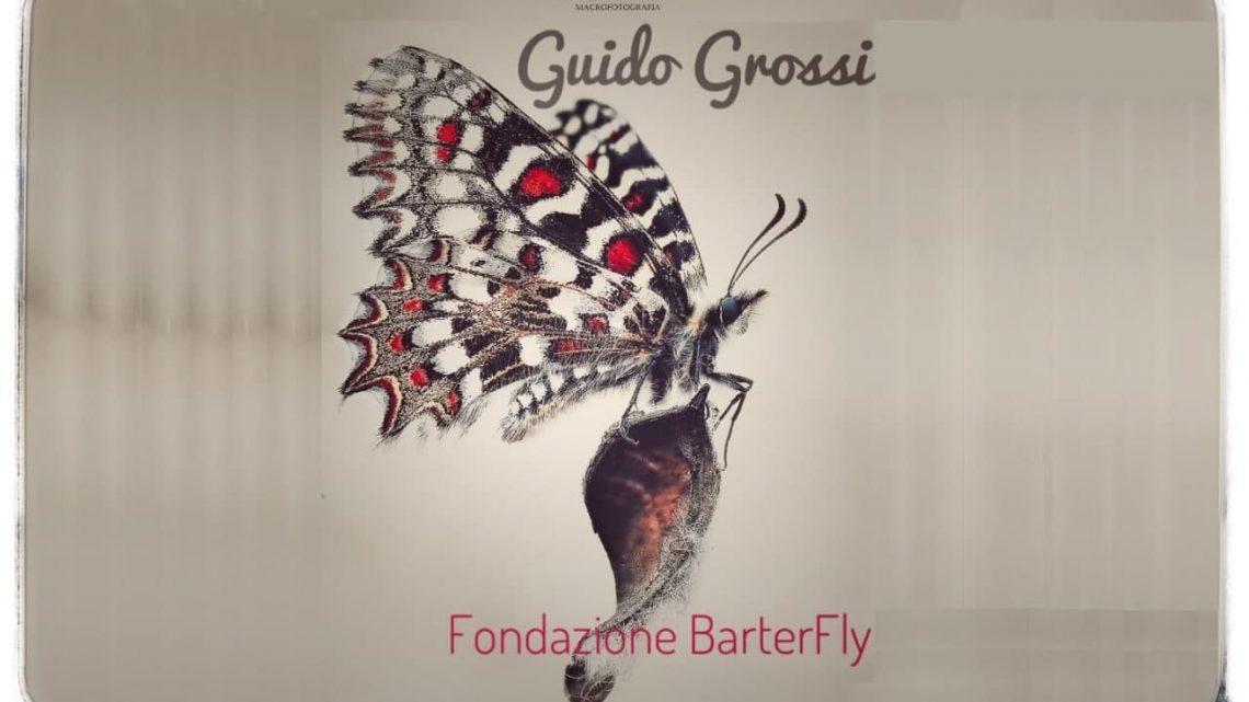 Guido Grossi – Fondazione BarterFly – Da bruco a farfalla